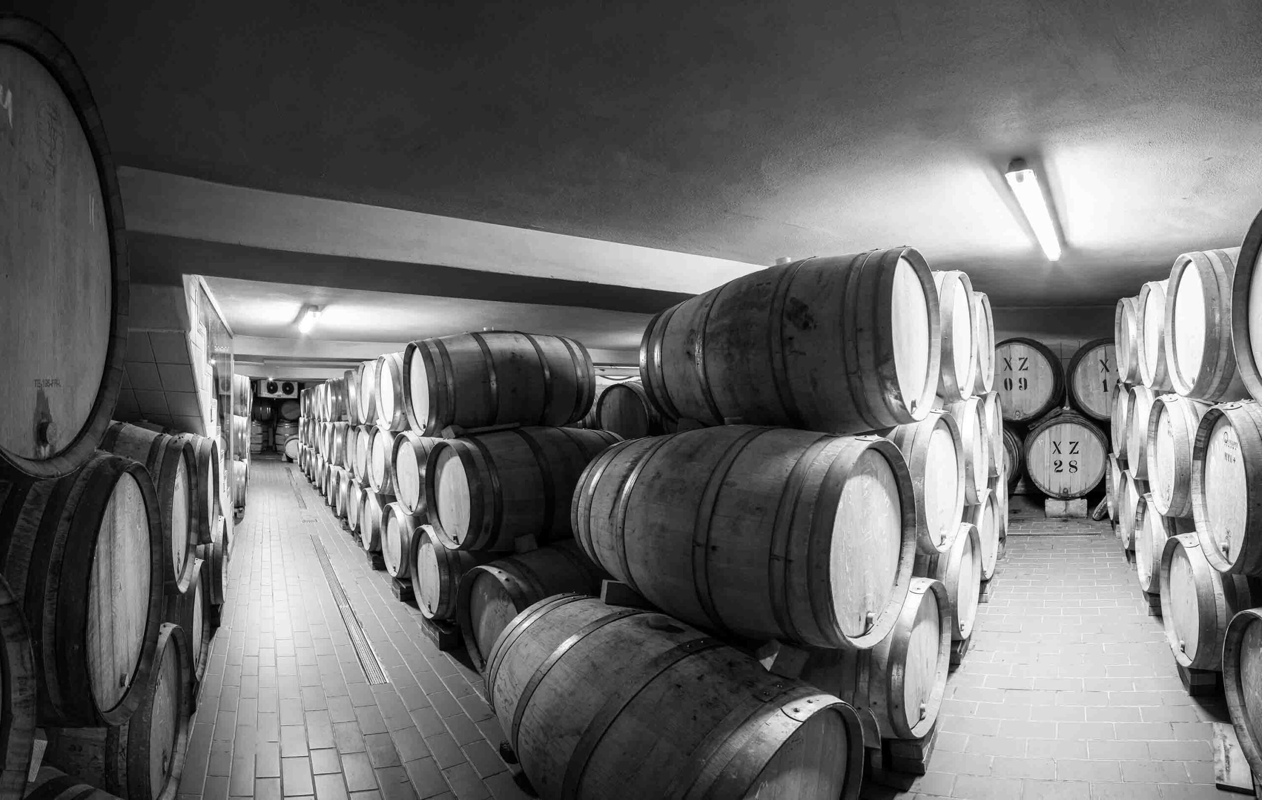 globos-winery-barrels